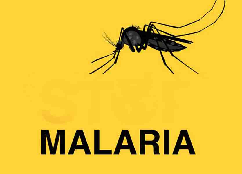 includes the word MALARIA